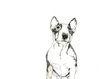 Bull Terrier - Print of Original Drawing - Dog Art