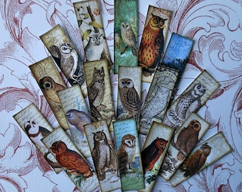 2 SETS to choose from- 18 domino or microscope slides- Steampunk OWL Stickers, Owl jewelry vintage owl prints, owl pendants owl art stickers