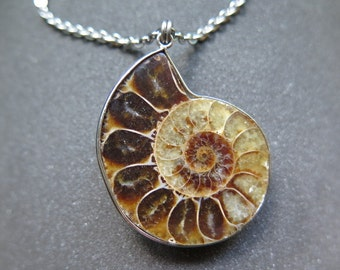 mens necklace. ammonite pendant jewelry. stainless steel chain.