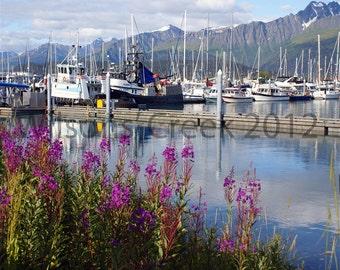 Alaskan Seaport and  Fireweed