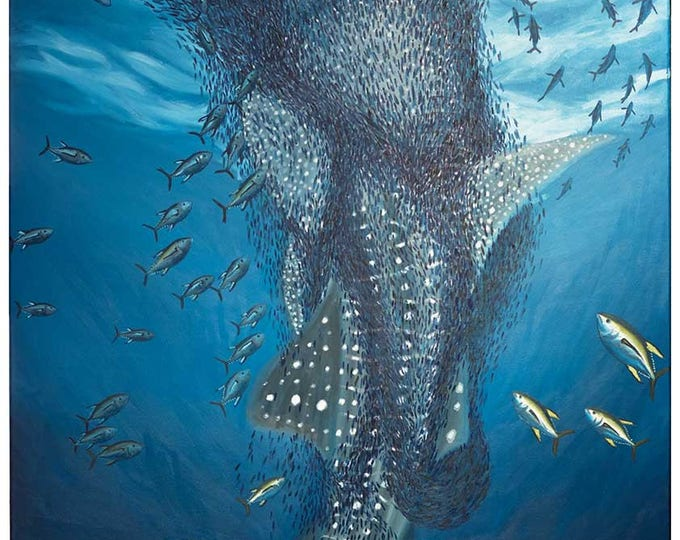 Whale Shark with Tuna and Bait Ball - original oil painting on stretched linen canvas by Christian Turner