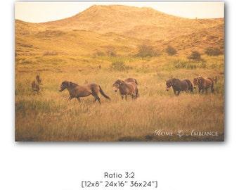 Equestrian decor, Nature art print, wild horses wall art, soft warm colors, landscape photo print, Wildlife on canvas, Wild horses running