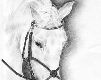 Horse portrait-Original-Graphite pencil drawing-Horse drawing-Horse art-Horse decor