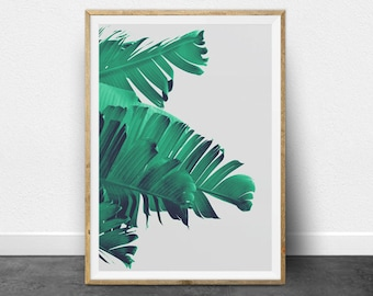 Tropical Print, Tropical Decor, Tropical Printable Art, Tropical Digital Art, Tropical Plant Print, Palm Tree Print, Palm Leaf, Palm Print