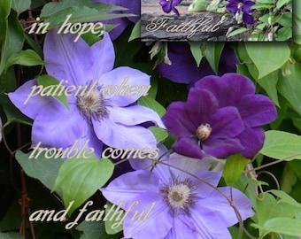 FAITHFUL,  Romans 12-12 climatis lavendar purple nature, Word Scripture Photo Collage, Christian Wall Art CANVAS Fine Art Gina Waltersdorff