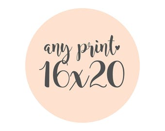 Any Print in a 16x20