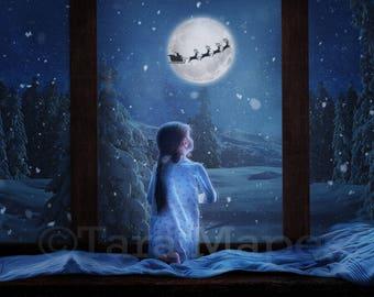 Christmas Window Digital Background