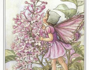 The Lilac Fairy Cicely Mary Barker Flower Fairies Vintage Print 1995 Wall Art Nursery Decor Fairy Print Home Decor Print Fine Art