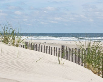 Coastal Wall Print, Beach Photography, Sand Dune Picture, Ocean Photograph, Beach Grass and Dune Fence, Beach Wall Art, Seashore Photograph
