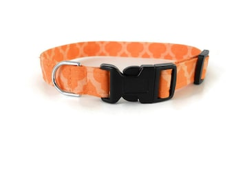 Orange quatrefoil dog collar, peach collar, orange creamsicle cat collar, spring pet collar, cute quatrefoil dog collar