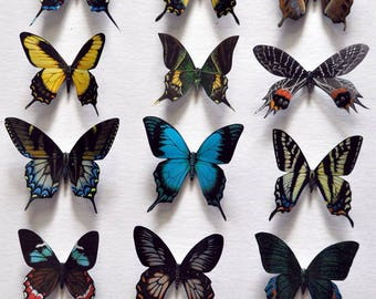 Butterfly Magnets Insects Set of 12 Refrigerator Magnets Kitchen Decor Handmade Kitchen Magnets