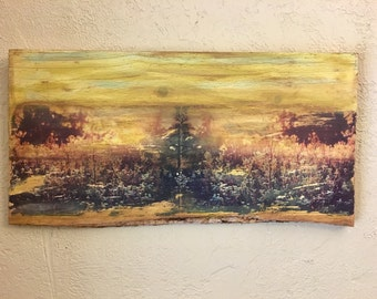 Home Decor Wall Art, Wood Slice, Wood Piece, Wildflowers and Sunsets
