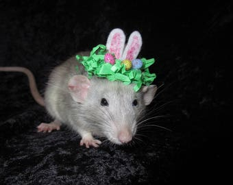 Easter Cottontail Rat Hat