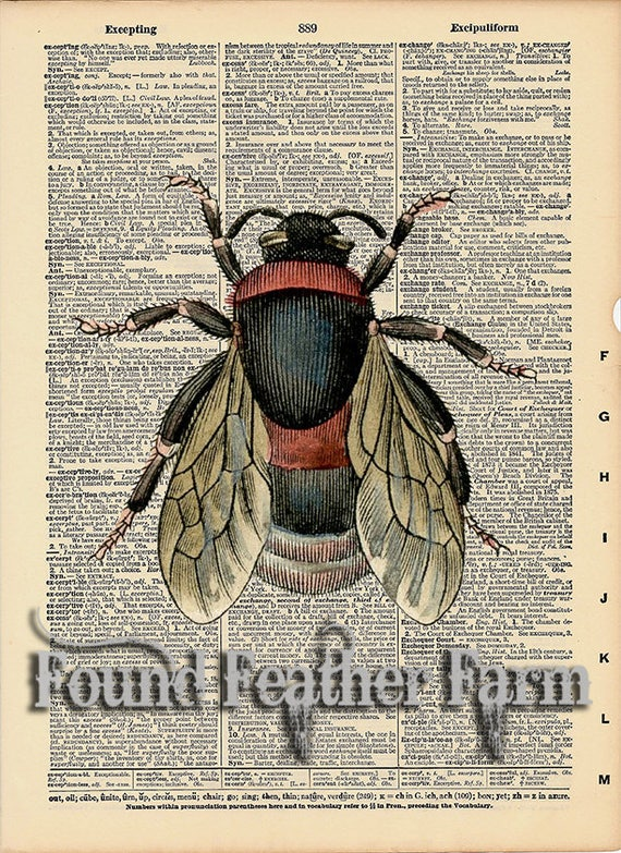 """Vintage Antique Dictionary Page with Antique Print """"Vintage Bee"""""""