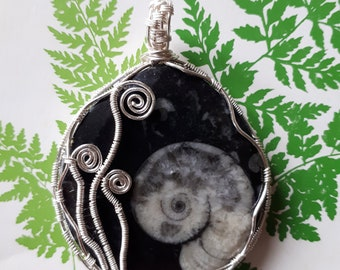 Fibbonaci inspired Ammonite Pendant