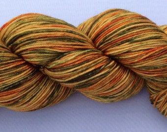 Fall is Coming - hand dyed yarn 3.5 oz 437 yds