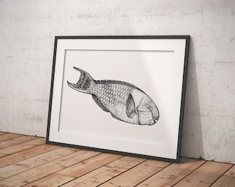 DOTWORK animal-print, black/white, A3/A4 Art print/poster, fish-print, illustration, gift idea, Lineart