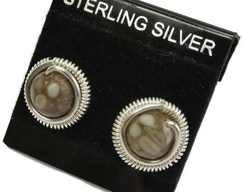 Crinoid Fossil & Sterling Silver Coiled Stud Post Earrings
