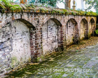 Charleston Brick Wall - Photographic Print
