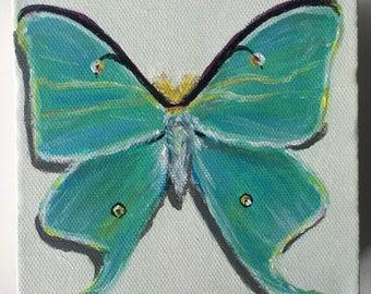 "Mini Luna Moth Acrylic Painting 5x5"""