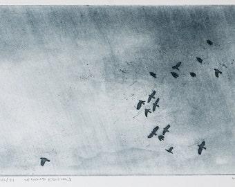 Birds Flying Across Sky Print - Rook Sky Etching - Birds in Flight Etching Print - Birds Migrating Print - Original Hand-pulled Print