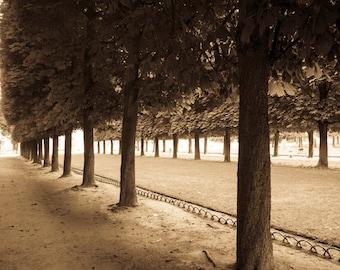 Paris Photography Luxembourg Garden Paris Park Photo Spring Trees France Neutral Colors Sepia Beige Park par96