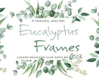 Watercolor Eucalyptus Clipart Frame Greenery Frames Clip Art Eucalyptus Greenery Baby Silver Dollar Leaf Green Leaves Illustration Vector