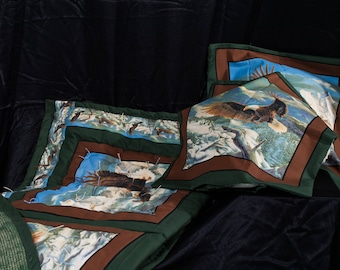 Lap Quilt and Cushions