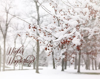 Winter Wonderland Landscape Photograph, Winter Snowy Landscape, Snow Covered Trees, Winter Home Decor, Red Berries in Snow, 8x10