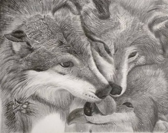 Timberwolves Wolves Animal Print Graphite Pencil Drawing A4 and A3