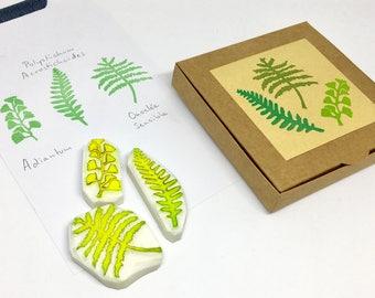 Tampons fougères, tampons feuilles,  coffret tampons, coffret Noël, plantes tropicales, tampon gravé main, tampons bullet journal, lot de 3