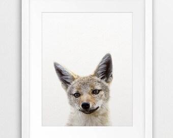 Coyote Print, Coyote Cub Photo, Baby Coyote Wall Art, Woodlands Animal Print, Woodland Nursery Decor, Modern Art, Kids Room Printable Art