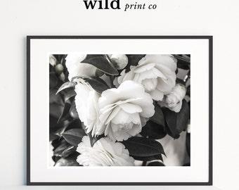 White Rose Print, Rose Wall Art, Rose Print, Modern Minimalist Decor, Bloom Prints, Flower Wall Art, Instant Download, Printable Art