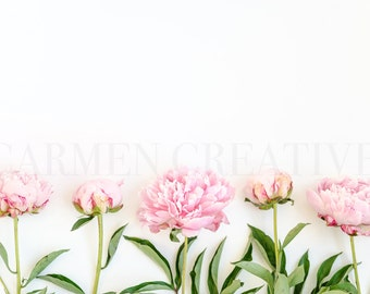 Set of 2 Pink Peonies Styled Stock Photography / Product Background / Website Header / Photography Banner