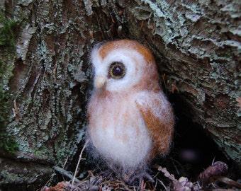 Needle Felted Owlet, Baby Owl Felted, Needle Felted Owl, Baby Barn Owl Wool Sculpture, Wool Felt Owl Baby, Baby Nursery Owl Decor