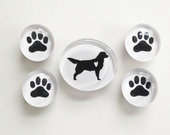 Retriever Love- Glass Magnets