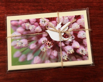 Virginia Wild Flowers Photographic Note Card Pack