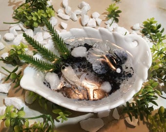 Miniature Koi Pond (Yin Yang Style)