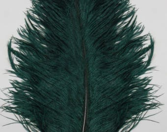 "2 PCs Ostrich Drabs 8-14"" Plume Feathers HUNTER GREEN"