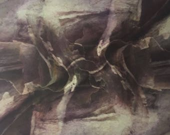 """Photo etching, square, multiple color, botanical, abstract, """"Paperbark I"""""""