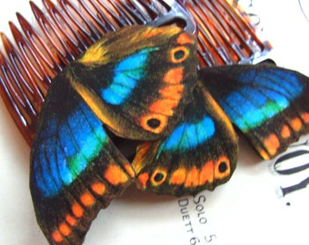 Blue and orange , Butterfly wings, hair slides, hair combs, Pair, by NewellsJewels on etsy
