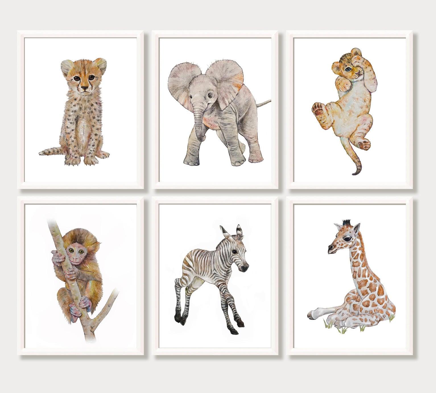 Safari Nursery Art Set Of 6 Safari Animal Prints Zoo Animal