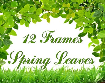 12 Digital Frames Spring Leaves and grass, green, Mother's Day clipart, scrapbooking, Printable, Digital Collage, Instant Download, fr 4
