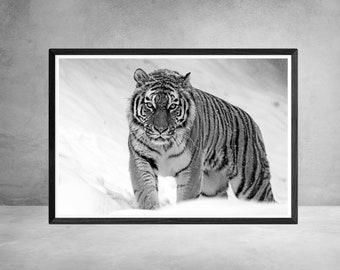 Black and White Prints Black and White Prints Photography Black and White Art Black and White Wall Art Prints Prints Tiger Fathers Day Gift