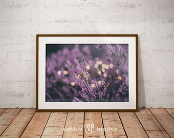 Lavender Fields, Plant Photography, Printable Digital Download, Instant Download, Decor, Purple Wall Decor, Herbal Wall Art, Botanical Print