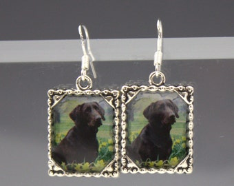 Chocolate Brown Lab Labradore Dog Puppy Picture Earrings Dimensional 3D Pet Silver