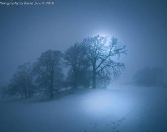 Fine Art Photography, Landscape Photography, Landscape Print, Minimalist, Wall Art, landscape Art, Tree Art, Nature, Print, Fog, Mist, Snow
