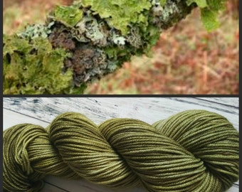 Hand Dyed Yarn, Superwash Merino Worsted Weight Tonal Yarn Perfect for Hats, Cowls, Scarves and Sweaters - Lichen