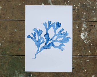 A3 Print 'Branch Out'. UK Made. Printed in Cornwall on 100% Recycled Paper, White