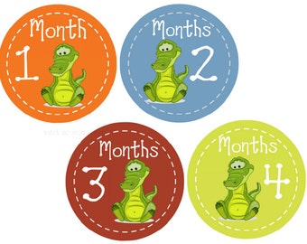 Baby Monthly Stickers, Baby Stickers, Month Stickers, Milestone Stickers, Alligator Stickers, Photo Stickers, Monthly Baby Stickers